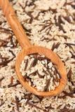 Natuurlijke en wilde rijst Stock Fotografie
