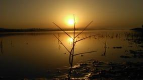 Natuurlijke foto, Lakeview, Zonneschijn royalty-vrije stock foto's