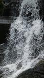 Natuurlijke fotografie stock foto