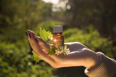 Natuurlijke geneeskunde - kruiden royalty-vrije stock afbeelding
