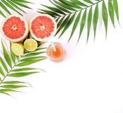 Natuurlijke grapefruit juice in glaskruiken stock foto