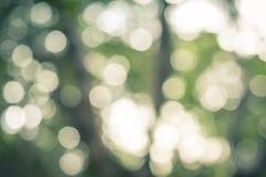 Natuurlijke Groene Abstracte Bokeh-Achtergrond Stock Fotografie