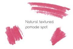 Natuurlijke het ontwerpelementen van de pommadekunst van lippenstift Royalty-vrije Stock Foto