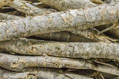 Natuurlijke houten achtergrond - close-upstapel van brandhout Voorbereiding van brandhout voor de winter en het gebruik voor het  Royalty-vrije Stock Afbeeldingen