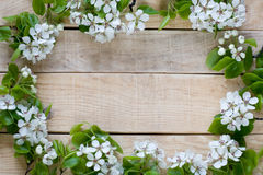 Natuurlijke houten achtergrond met de witte boom van het bloemenfruit Stock Afbeeldingen