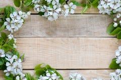 Natuurlijke houten achtergrond met witte bloemenboom Stock Afbeelding