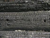 Natuurlijke houten die houtskool op wit, hardhouthoutskool wordt geïsoleerd Details op de oppervlakte van houtskool De zwarte ach Royalty-vrije Stock Fotografie
