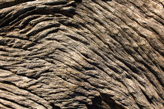 Natuurlijke houten oppervlakte, Abstracte achtergronden en texturen royalty-vrije stock foto's