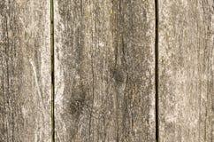 Natuurlijke houten raad Stock Foto
