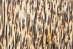 Natuurlijke houten textuur Stock Fotografie