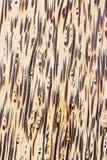 Natuurlijke houten textuur Stock Afbeeldingen