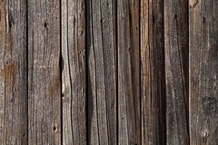 Natuurlijke houten warme grijze textuur royalty-vrije stock fotografie