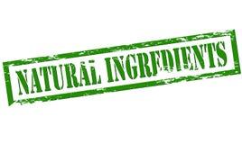 Natuurlijke ingrediënten stock illustratie