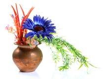 Natuurlijke installaties en bloemen royalty-vrije stock afbeelding