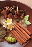 Natuurlijke kruiden aromatherapy stock fotografie