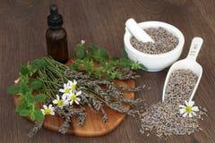 Natuurlijke Kruidengeneeskunde stock afbeelding