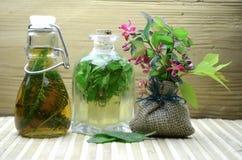 Natuurlijke kruidentintengeneeskunde Stock Foto's