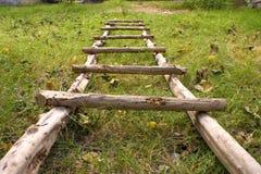 Natuurlijke Ladder Stock Foto's