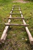 Natuurlijke Ladder Stock Fotografie