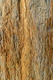 Natuurlijke lei met schaduwen van gouden en bruine kleuren royalty-vrije stock afbeelding