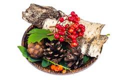Natuurlijke materialen voor Kerstmisambachten royalty-vrije stock afbeelding