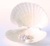 Natuurlijke mineralenpillen, natuurlijke zorg van gezondheid Royalty-vrije Stock Afbeelding