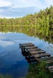 Natuurlijke moerasmening met een meer royalty-vrije stock fotografie