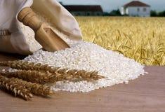 Natuurlijke ongepelde rijst Stock Afbeelding