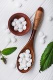 Natuurlijke organische pillen met kruideninstallatie Royalty-vrije Stock Afbeeldingen
