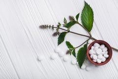 Natuurlijke organische pillen met kruideninstallatie Stock Foto's