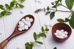Natuurlijke organische pillen met kruideninstallatie Royalty-vrije Stock Foto's