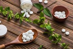 Natuurlijke organische pillen met kruideninstallatie Royalty-vrije Stock Fotografie