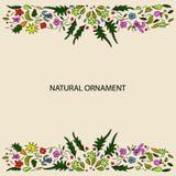 Natuurlijke ornamentkaart Stock Foto's