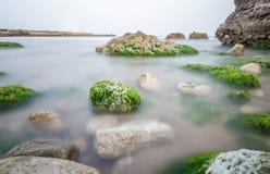 Natuurlijke pool stock fotografie