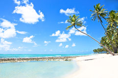 Natuurlijke Pool in een Tropisch Strand in Brazilië Royalty-vrije Stock Fotografie