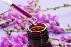 Natuurlijke remedies Stock Fotografie