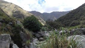 Natuurlijke reserve in Merlo, San Luis Argentina royalty-vrije stock foto