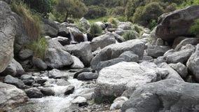 Natuurlijke reserve in Merlo, San Luis Argentina royalty-vrije stock fotografie
