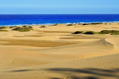 Natuurlijke Reserve van Duinen van Maspalomas, in Gran Canaria, Spanje stock afbeelding