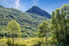 Natuurlijke reserve van Meer Ganna, provincie van Varese - Italië Stock Fotografie