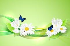 Natuurlijke romantische achtergrond met bloemen en vlinders Royalty-vrije Stock Afbeelding