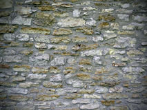 Natuurlijke Rotsmuur Stock Afbeeldingen