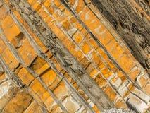Natuurlijke samenvatting II Royalty-vrije Stock Foto