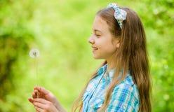 Natuurlijke Schoonheid Kinderjarengeluk De vakantie van de zomer Rancho en land gelukkige kindgreep blowball meisje en stock foto's