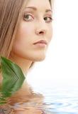Natuurlijke schoonheid in water Royalty-vrije Stock Afbeelding