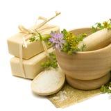 Natuurlijke schoonheidsmiddelen en geneeskundekruiden Stock Foto's