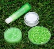 Natuurlijke schoonheidsmiddelen voor de zorg van de lippenhuid Stock Fotografie