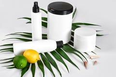 Natuurlijke schoonheidsmiddelen voor home spa Hoogste meningsflessen room, shampoo, masker met etherische olie, vers groen kalkfr royalty-vrije stock fotografie