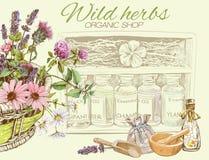 Natuurlijke schoonheidsmiddelenbanner Royalty-vrije Stock Afbeelding