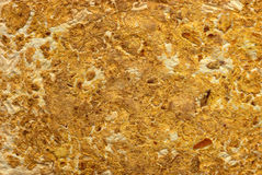 Natuurlijke sinaasappelendocument achtergrond Royalty-vrije Stock Fotografie